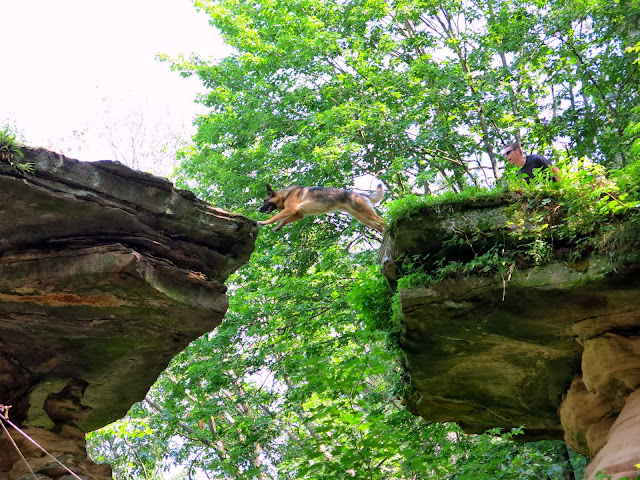 The Wisconsin Dells A History Told In Sandstone