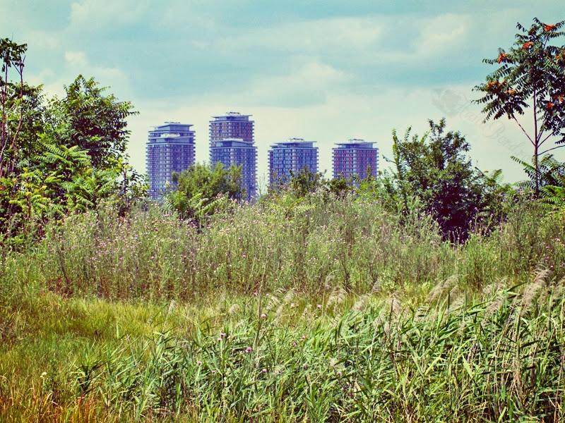 asmita gardens lac vacaresti iulie 2013