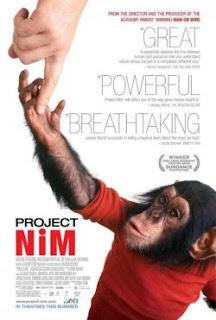 Proyecto Nim Online