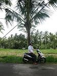 Ubud: balade en scooter vers Tegallalang
