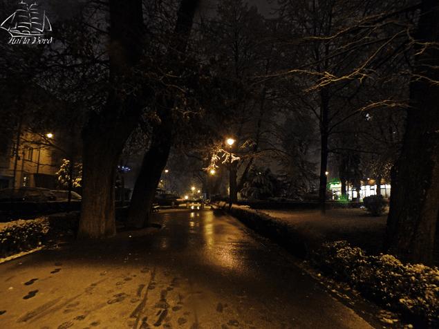 parcul astra iarna sibiu