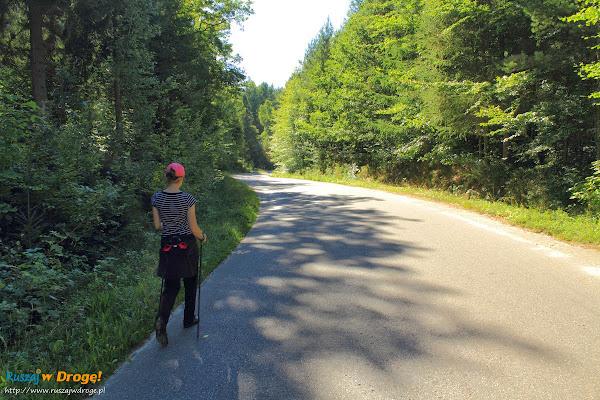 Na trasie Nordic Walking w Hejtusie - część szlaku asfaltem