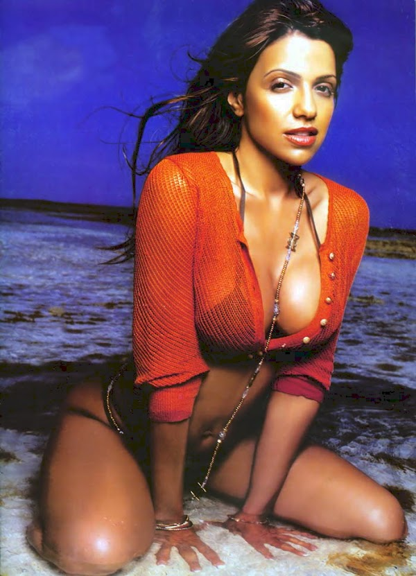 Happy Birthday Vida Guerra(bad girl-9photos)9