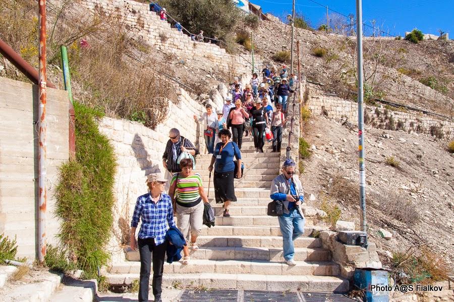 Экскурсия в Цфате. Гид в Израиле Светлана Фиалкова.