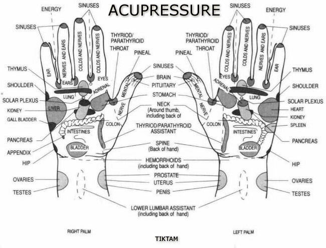Benefits Of Acupressure Points Acupressure Points In Hand And Leg