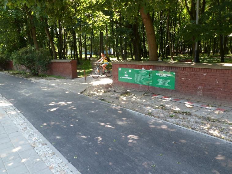 DDR jest poprowadzona przy wejściu/wyjściu z parku - to nie jest dobre rozwiązanie. O ile dorosłych nad murkiem widać, o tyle dzieci nie. Tragedii może nie ma ale widoczność nie jest super.