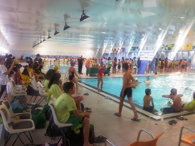 Jovens nadadores de Lamego conquistam pódio em casa