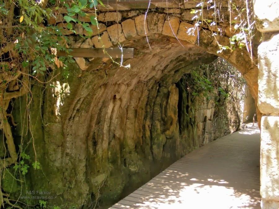 Римский мост в Баниас. Экскурсия на Голанские высоты. Гид Светлана Фиалкова.