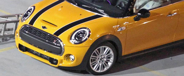 2014 Mini caught naked