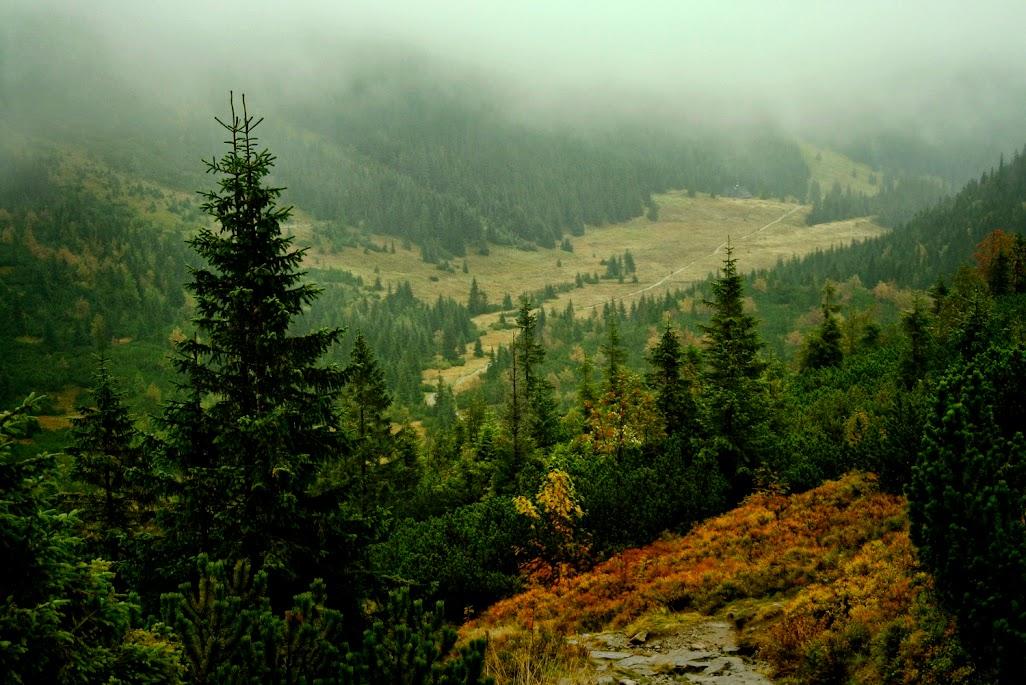 Podejście na Przełęcz pod Kopą Kondracką