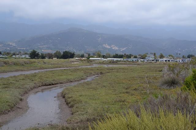 channels in the marsh