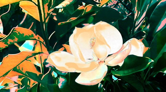 Magnolias, an original fine art computer-generated image.