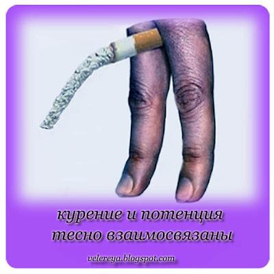 курение и потенция тесно взаимосвязаны
