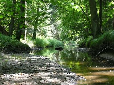 Turistické cíle v okolí - Maršovský potok