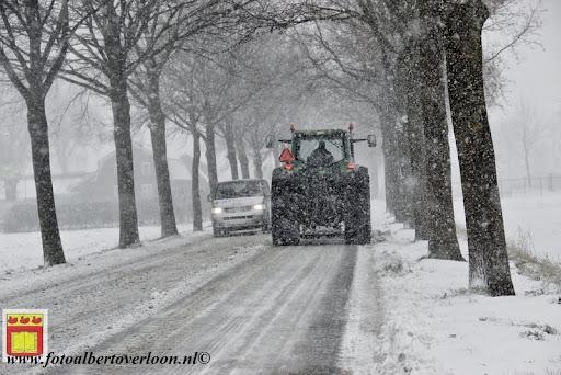 eerste sneeuwval in overloon 07-12-2012  (3).JPG