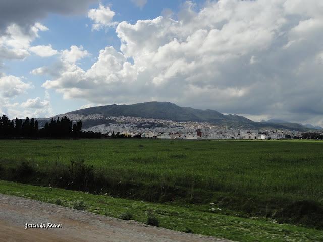 Marrocos 2012 - O regresso! - Página 9 DSC07965