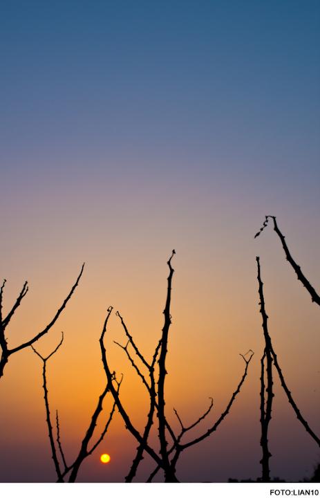 [隨拍] 今天的夕陽~~