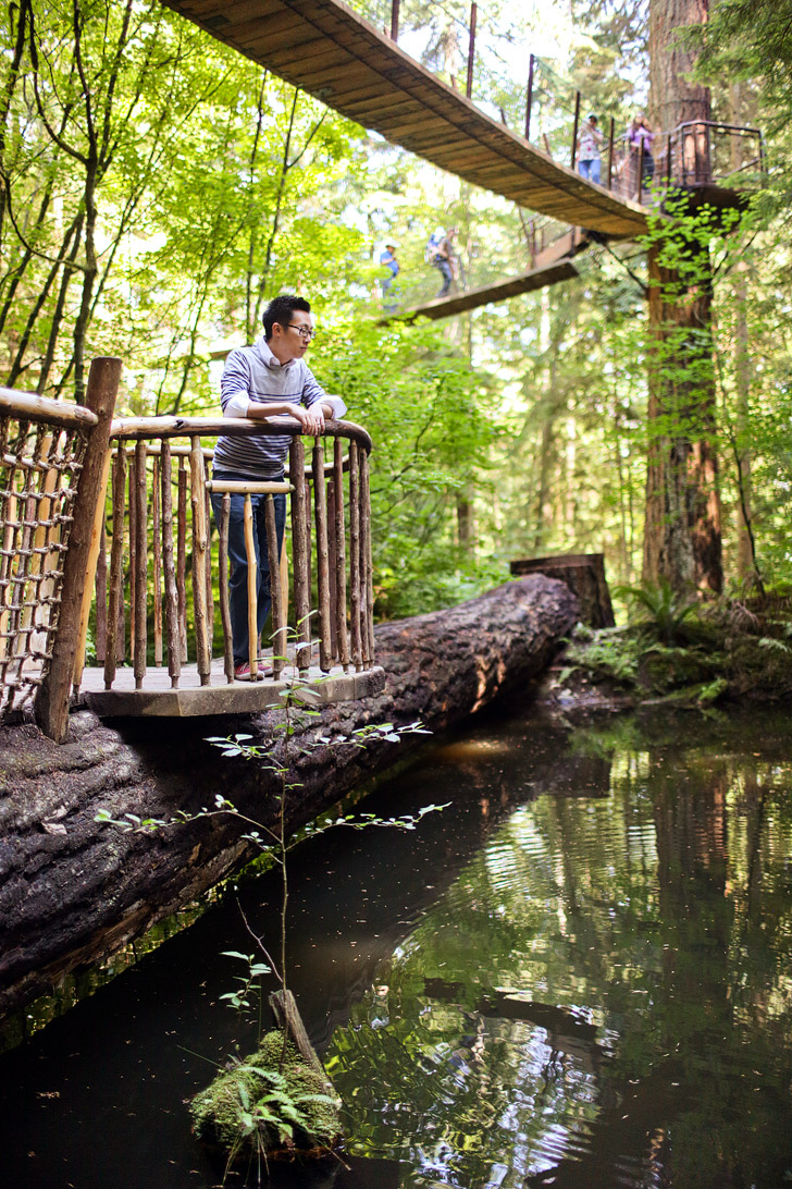 Treetops Adventures (Vancouver Things to Do).