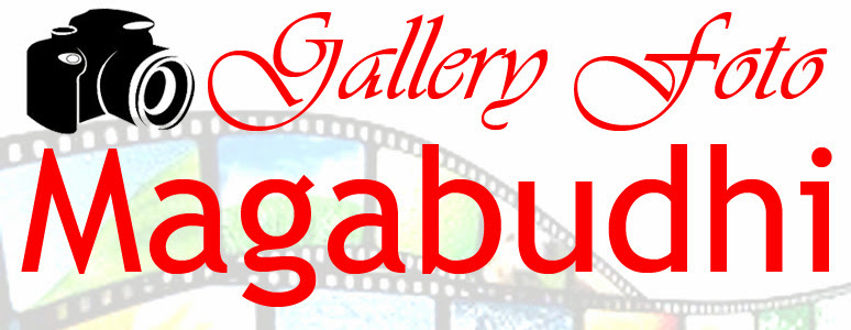 Gallery Foto