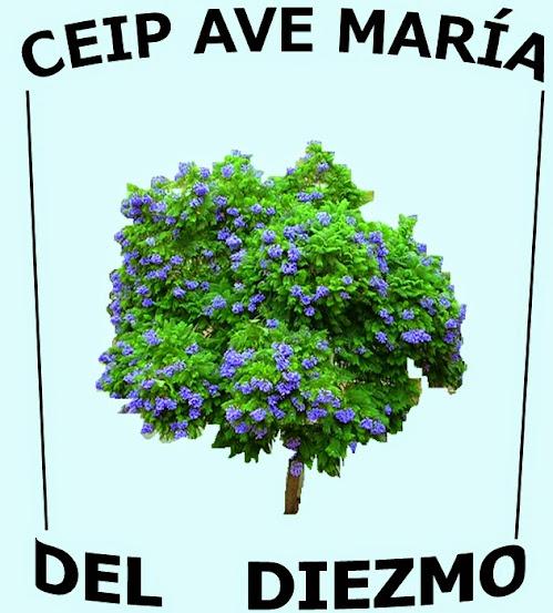 CEIP AVE MARIA DEL DIEZMO