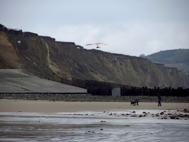 hang glider above the beach