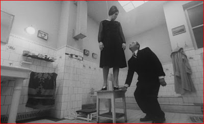 THE CREMATOR (Spalovač mrtvol, 1969)