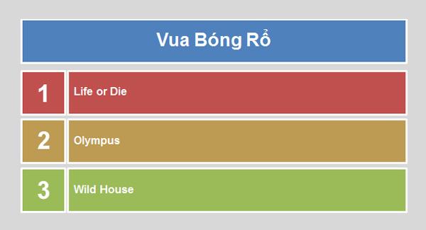 VEC 2013 kết thúc chung kết khu vực miền Nam 9