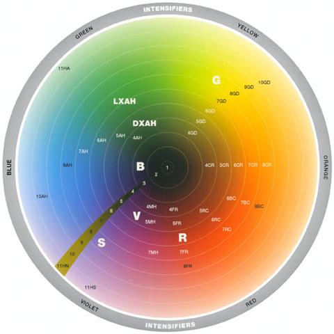 Memahami koreksi warna dan tonal