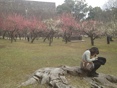 Katie writing on a tree stump with blooming ume in the background