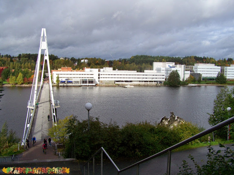 Jyväskylä University and Lapland Exchange Student