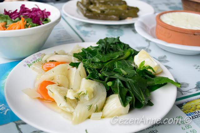 zeytinyağlı Ege otları: rezene, turp otu, şevketi bostan ve cibes, Avrasya Ev yemekleri Alaçatı, İzmir