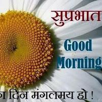 @dinkarshah1