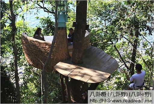 樹上鳥巢餐廳