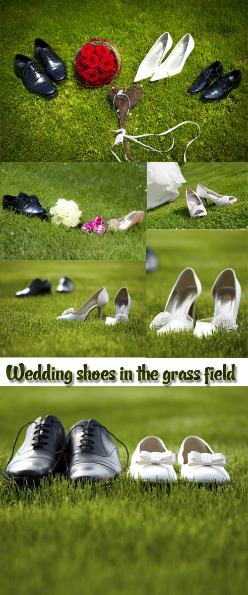 Stock Photo: Wedding shoes in the grass field