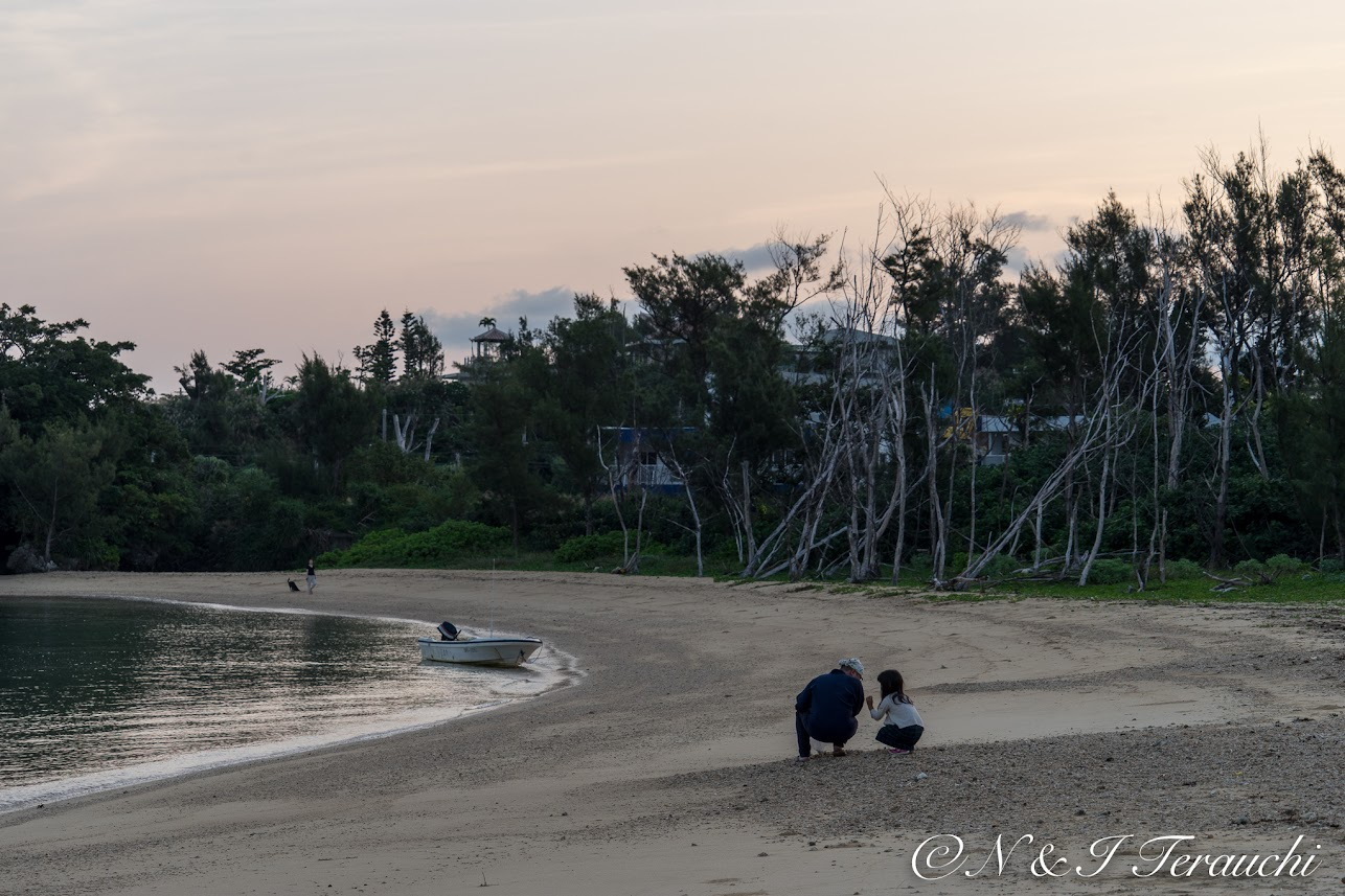 微笑ましい風景が広がる砂浜