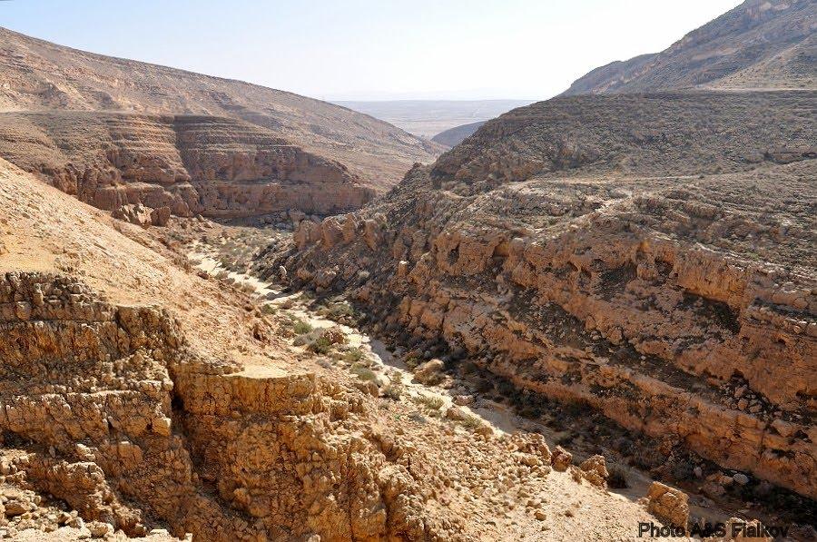 Экскурсия в пустыню Негев, ручей Мамшит