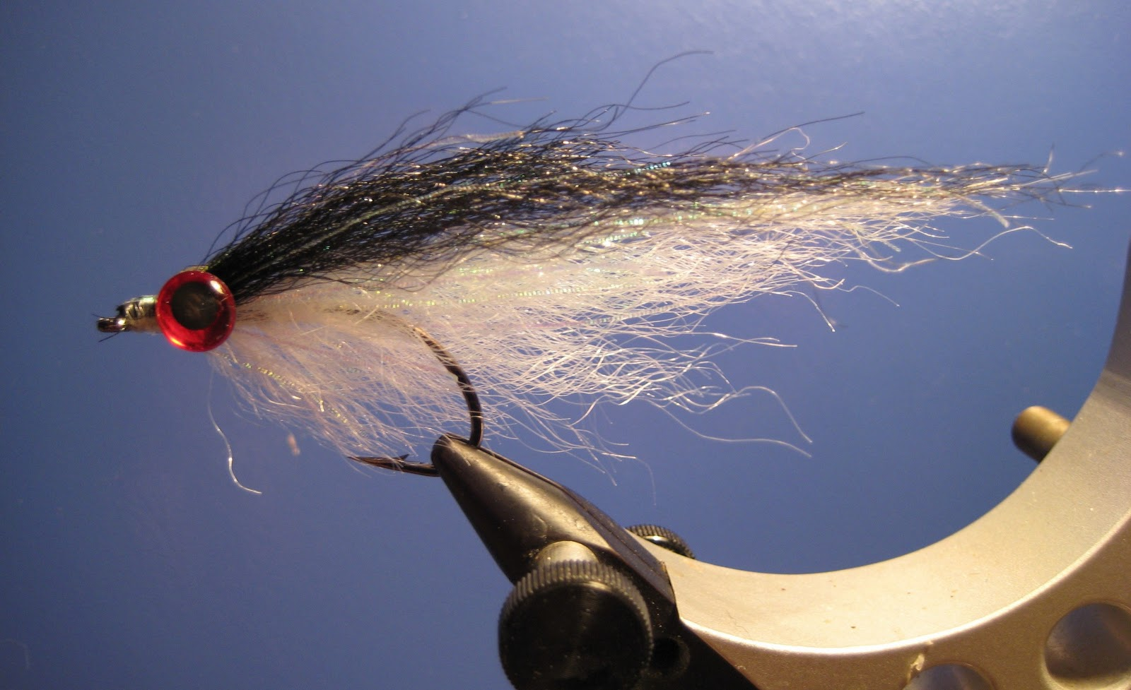 Bear Stripers tight lines fly fishing: bear's bunker