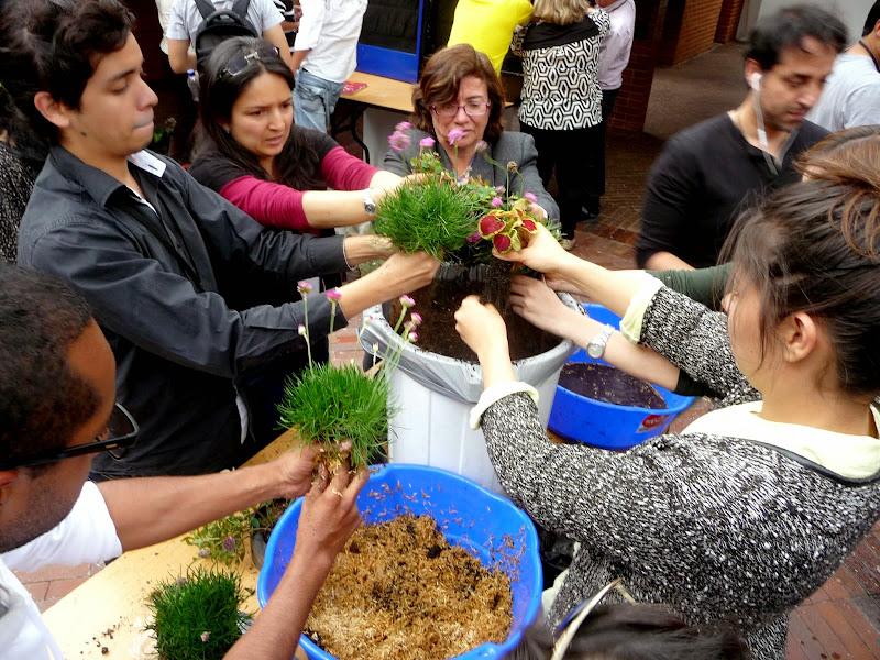 Curso de jardines verticales en Bogotá. Práctica.