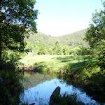 Farmland near Cedar Brush track head (365699)