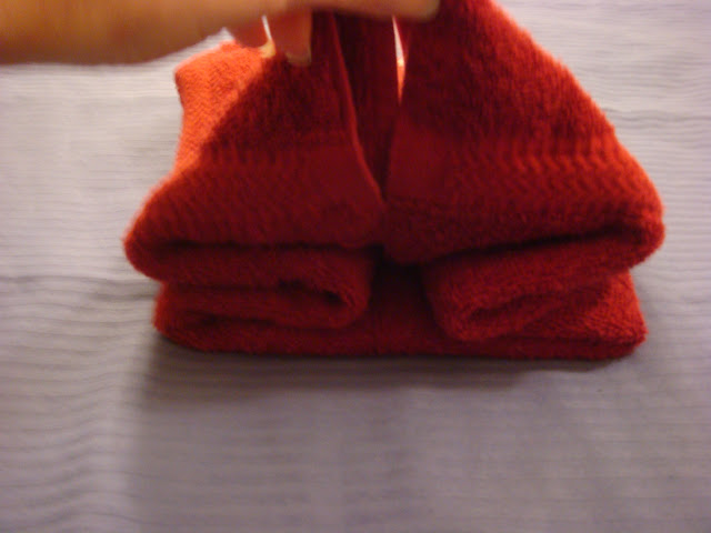 Towel Origami Flower