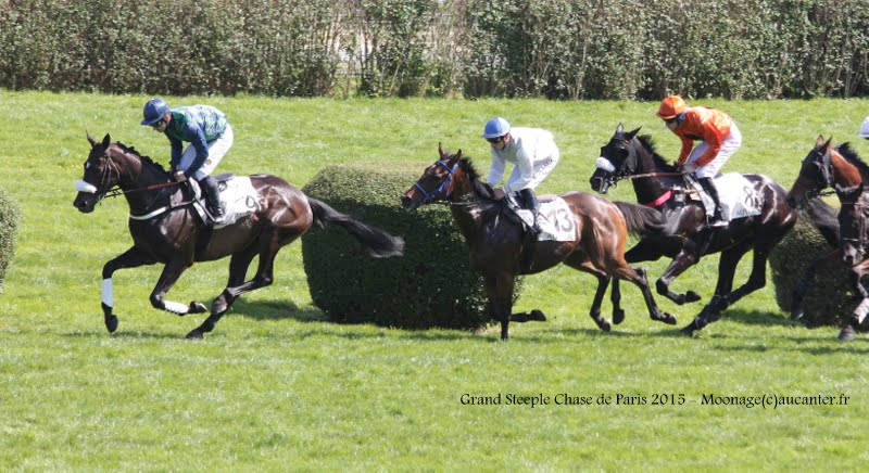 Photos Auteuil 17-05-2015 Journée du Grand Steeple IMG_0195