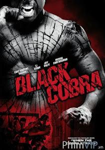 Phi Vụ Hắc Xà Đen - Black Cobra poster