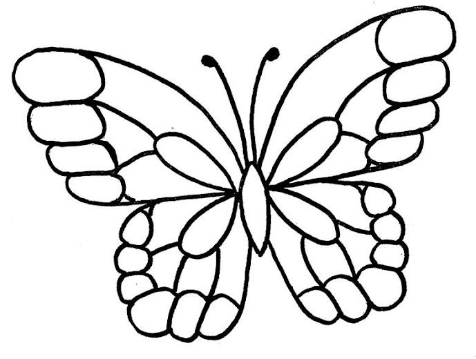 Papillon accroche moustiquaire cercle de fermi res montr al nord - Modele de papillon ...