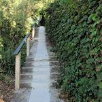 Walking mainly on footpaths through Mosman (257381)