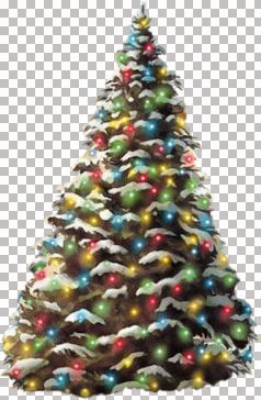 csm-Outdoor Christmas Tree 11-12-04-csm.jpg