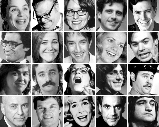Image result for chicago the second city alumni