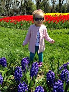 bahar havası çiçekler