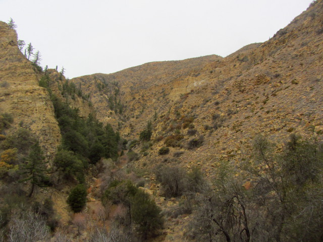 looking back up the canyon