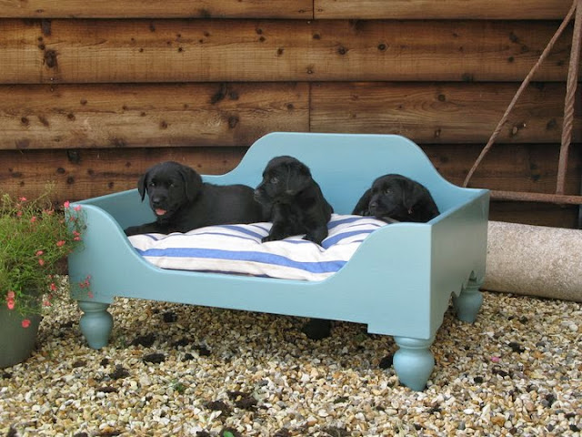 Luxury Raised Wooden Dog Beds Large Hand Painted