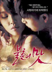 The Taste of an Affair 불륜의 맛 - Mùi vị của ngoại tình 18+